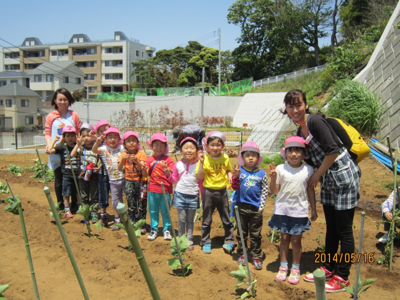 2014 農園体験:春夏